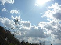 山の空気はすばらしい。
